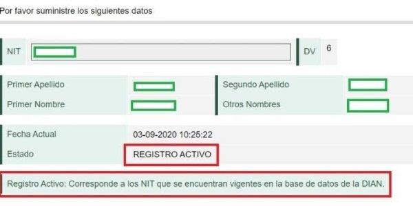 datos registro activo rut