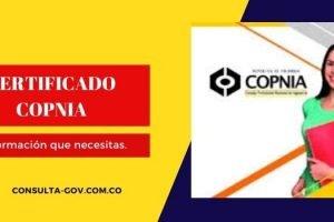 Certificado Copnia: como obtenerlo