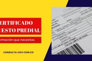 Obtener certificado impuesto predial