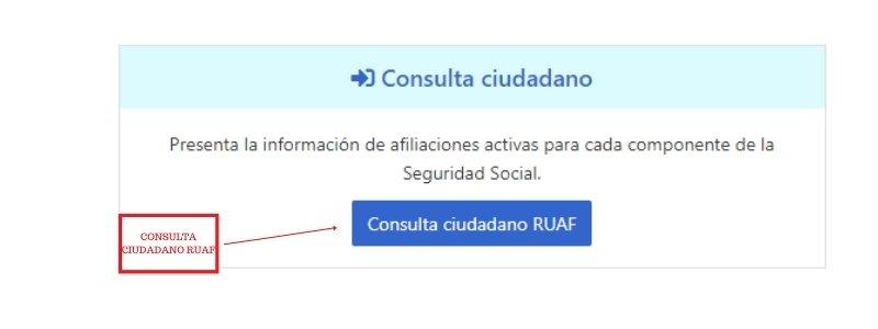 consulta ciudadano ruaf