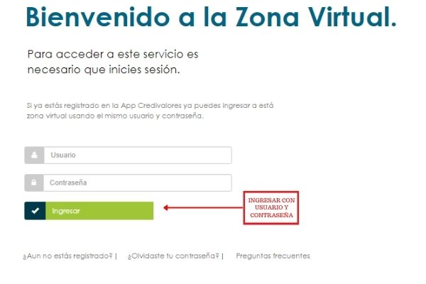zona virtual